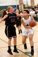 012-j-01-27-16-glnvr-eastmnt-girls-bball-2365
