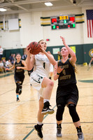 014-j-02-05-16-glenvar girls bball-2760