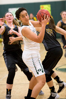 008-j-02-05-16-glenvar girls bball-2739