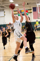 015-j-02-05-16-glenvar girls bball-2761